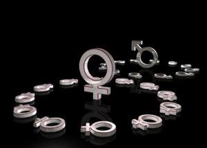 La Brecha de Género